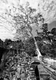 IndonesienPanorama_Ta_Prohm04sw.jpg